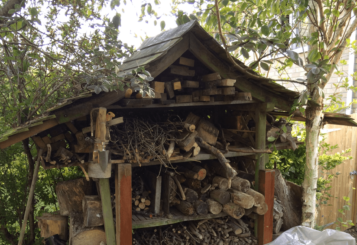 Ben's wood shed